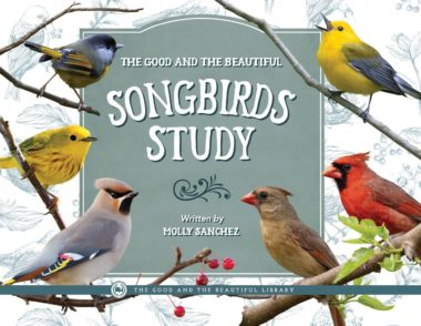 The Good and The Beautiful Songbirds Study by Molly Sanchez